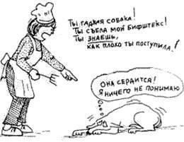 Как правильно наказывать овчарку за непослушание, наказание для щенков и взрослых собак