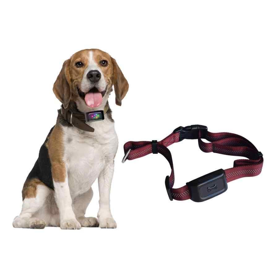 Gps ошейник для собак: что это такое и как он работает