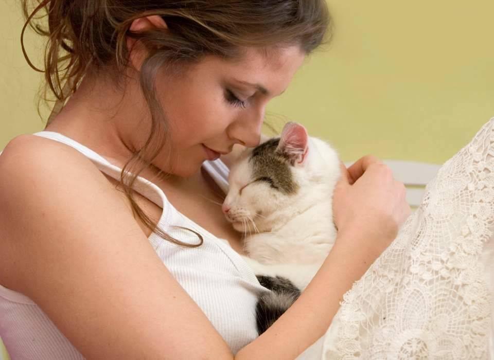 В поисках ключа к кошачьему сердцу: 10 научно доказанных лайфхаков, чтобы завоевать любовь кошки
