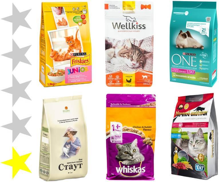 14 лучших влажных кормов для котов и кошек - рейтинг 2020