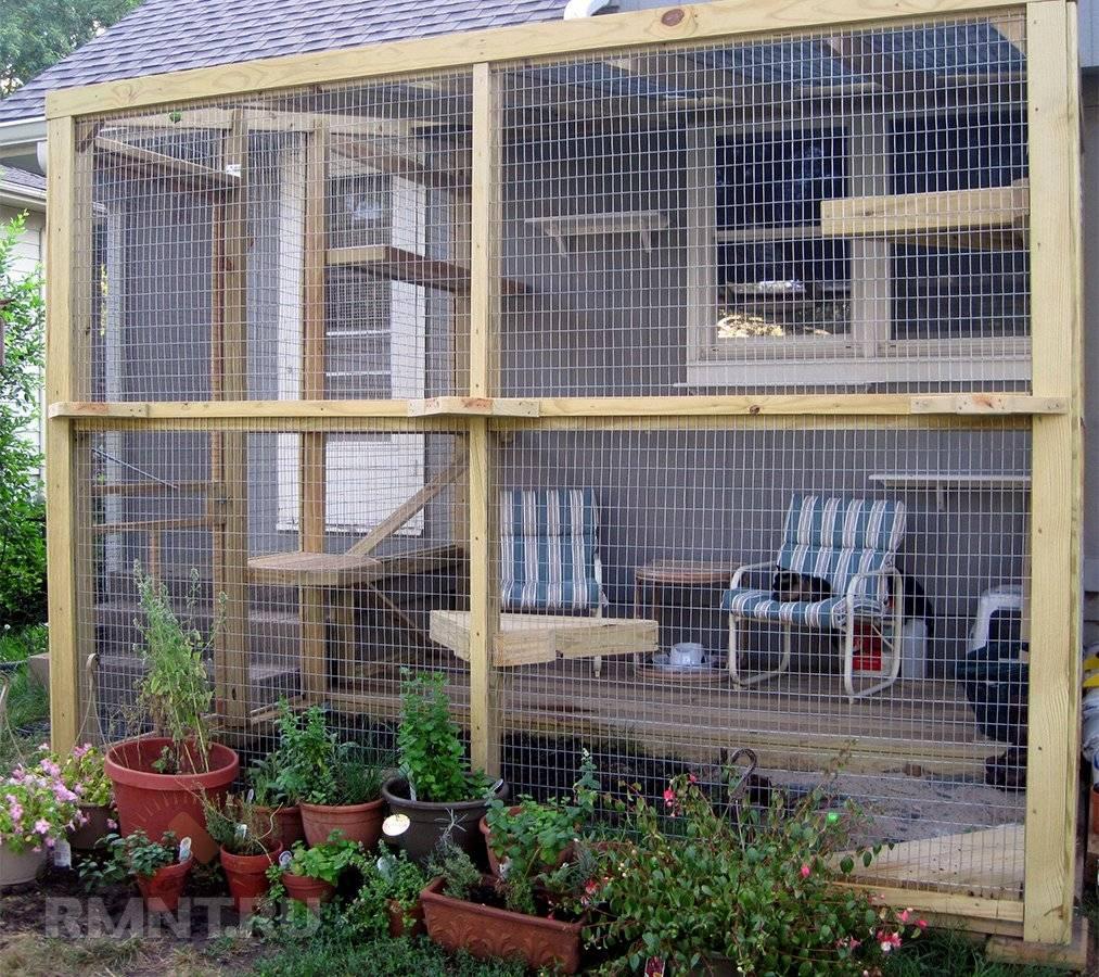 Идеи для домашних животных на даче и в квартире | вдохновение (огород.ru)