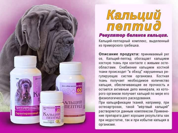 Витамины для беременных собак мелких, средних и крупных пород