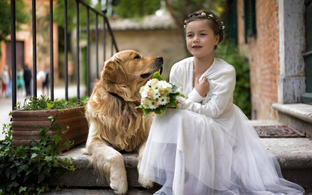 Праздники братьев наших меньших: всемирный день домашних животных и другие — 4 лапки