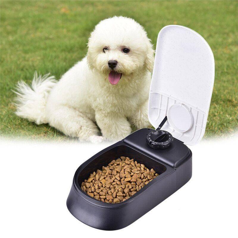Автоматическая кормушка для собак: принцип работы автокормушки и как ее сделать своими руками