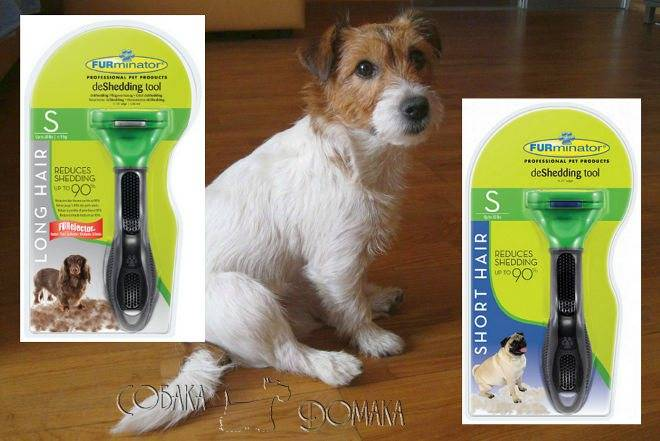 Как выбрать фурминатор для собак   dogkind.ru