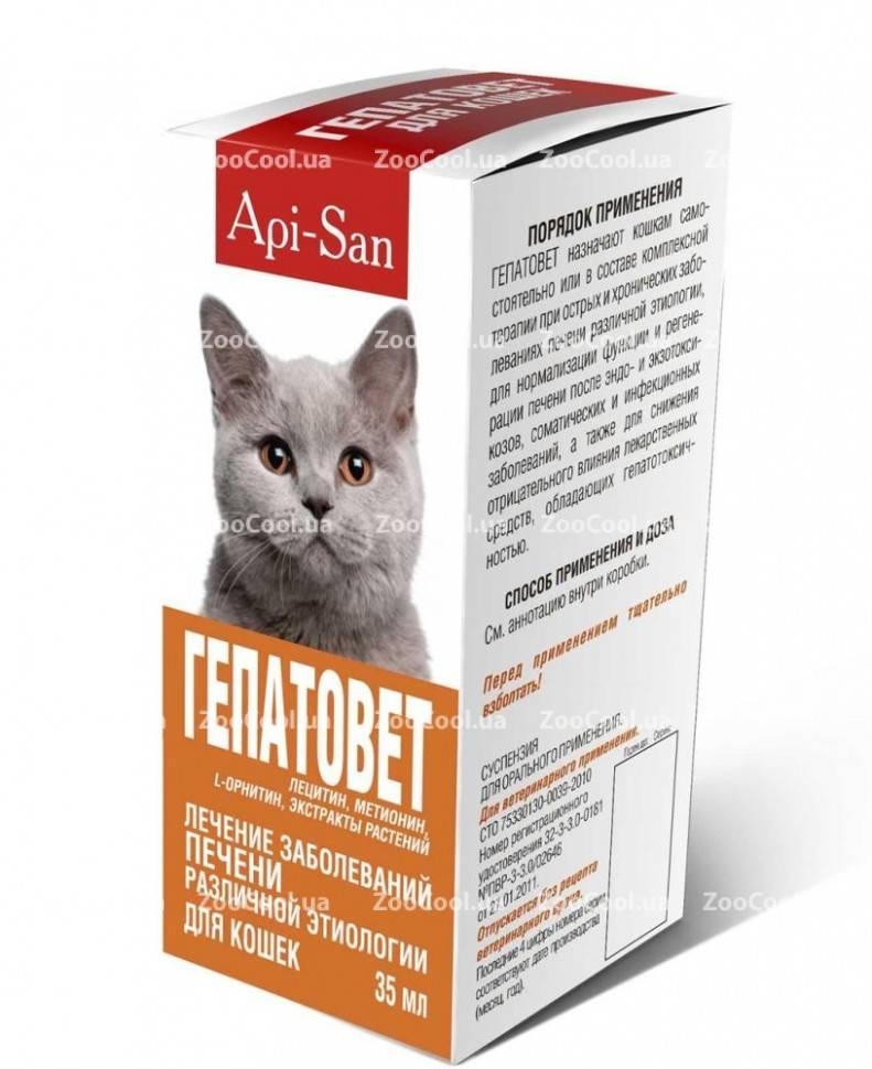 Гепатовет для кошек – защита и восстановление печение