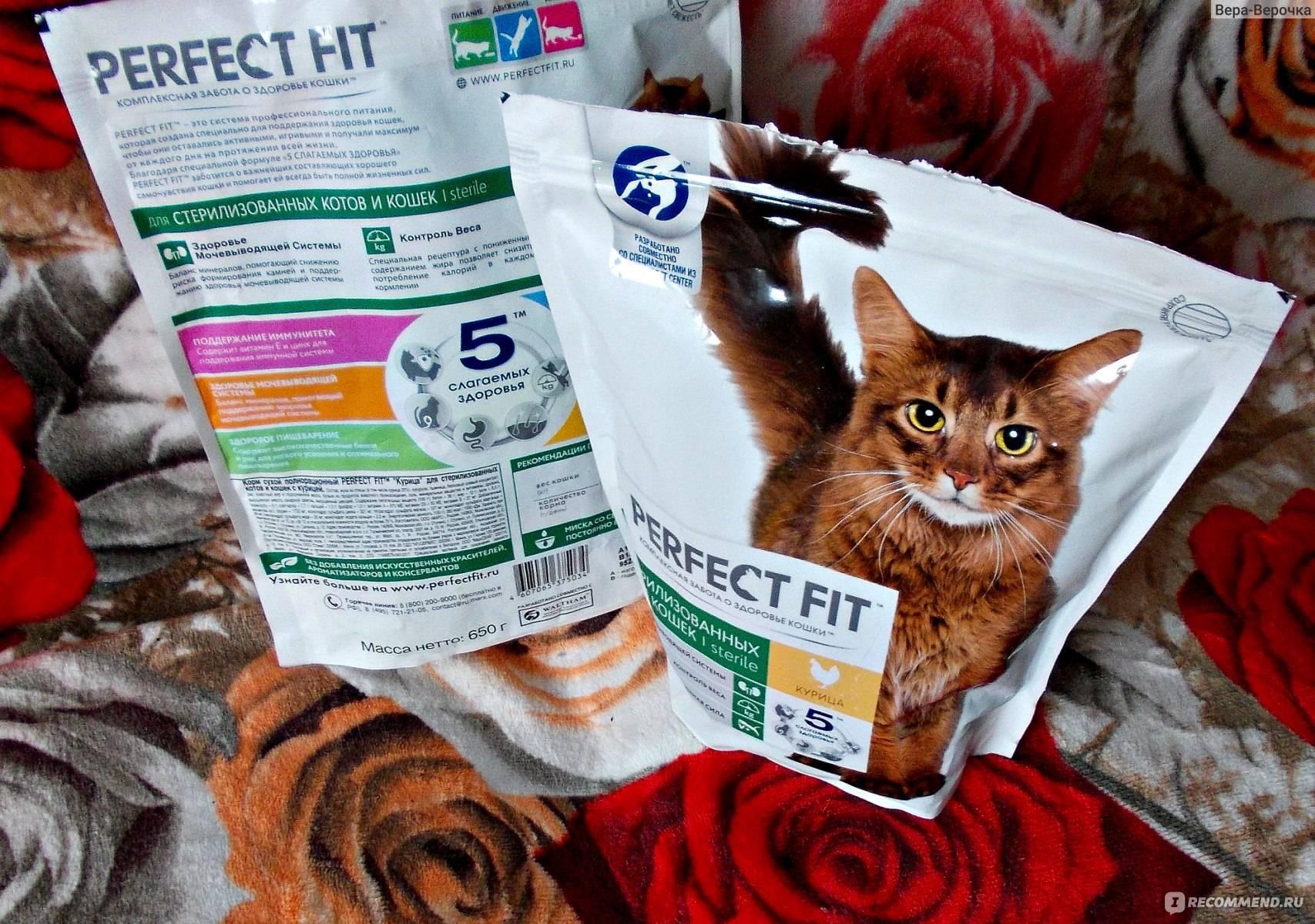 Корм для кошек perfect fit («перфект фит»): отзывы ветеринаров и владельцев животных о нем, его состав и виды, плюсы и минусы