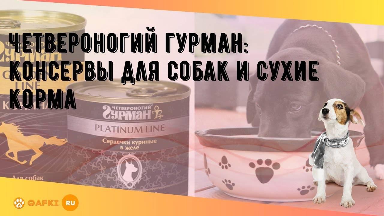 Преимущества консерв для кормления щенков или взрослых собак: разновидности