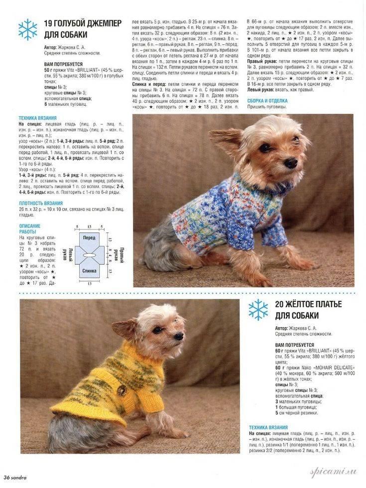 Йорк одежда для собаки