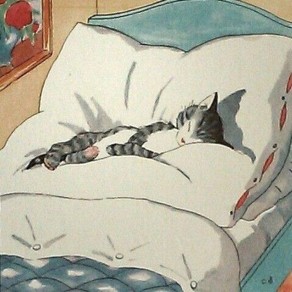 Что значит, если кошка спит в вашей постели, ложится в ногах, на живот или на подушку у головы
