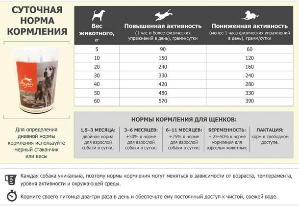 Как рассчитать дозировку сухого корма для собак: примеры рациона