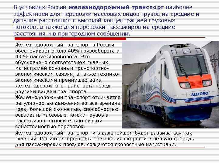 Как провозить животных в поезде по всем правилам