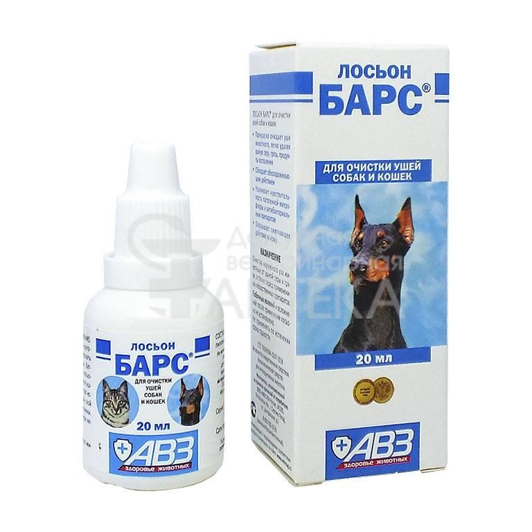 Как чистить уши собакам? как правильно очищать их в домашних условиях? можно ли использовать перекись водорода и хлоргексидин? как часто нужно чистить уши щенку?