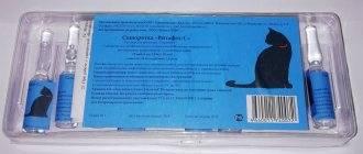 Инструкция по применению сыворотки глобфел-4 для кошек