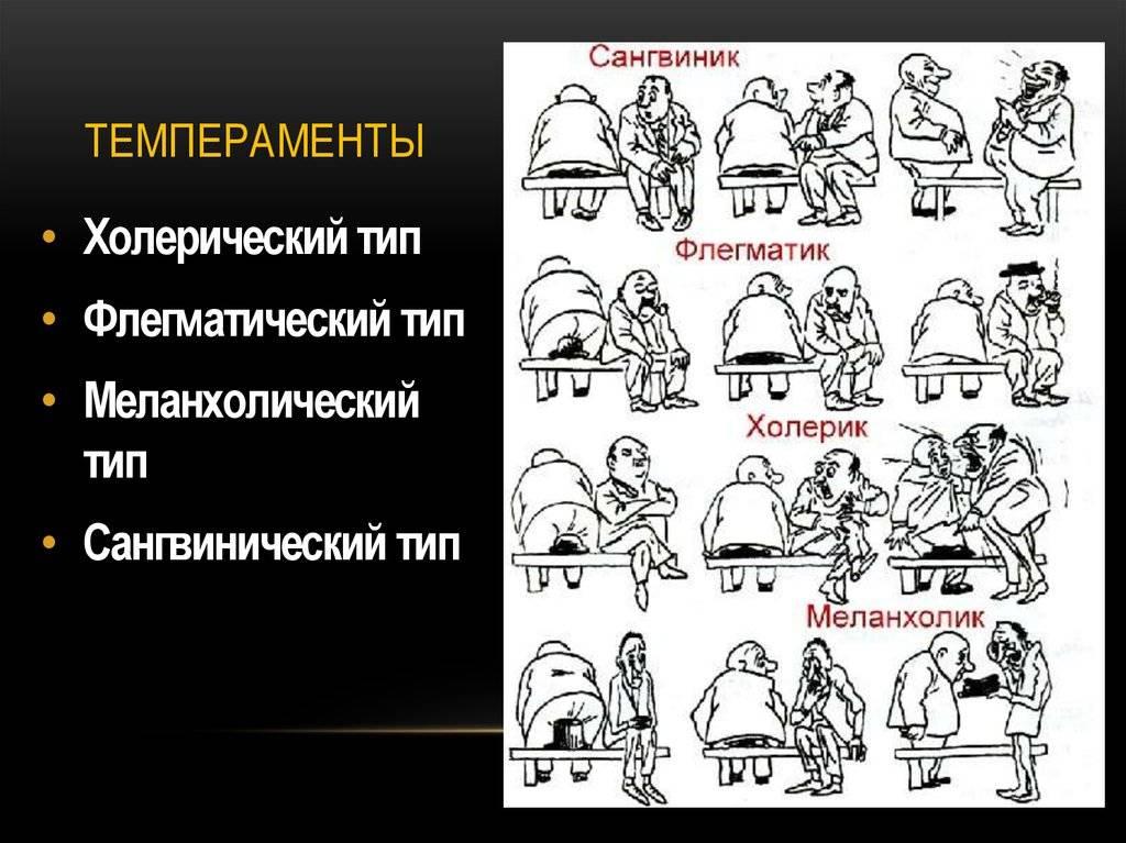 Бульмастиф: описание, фото, правила содержания и характеристика породы