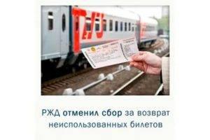 Перевозка животных без сопровождения владельцев теперь возможна в 226 поездах - зоотверь - тверской справочно - информационный портал для любителей животных