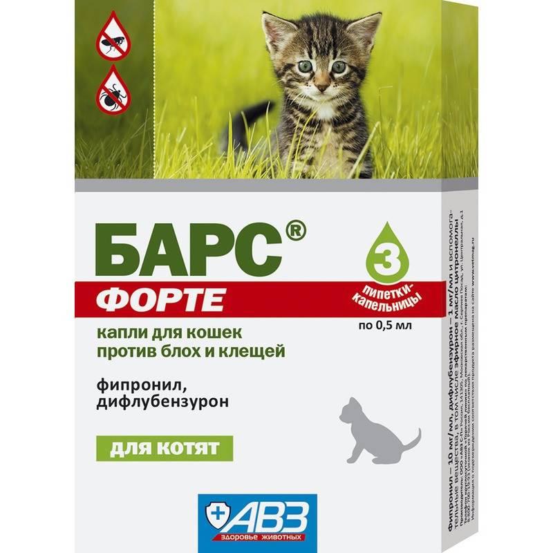Капли барс для кошек: описание и инструкция по применению