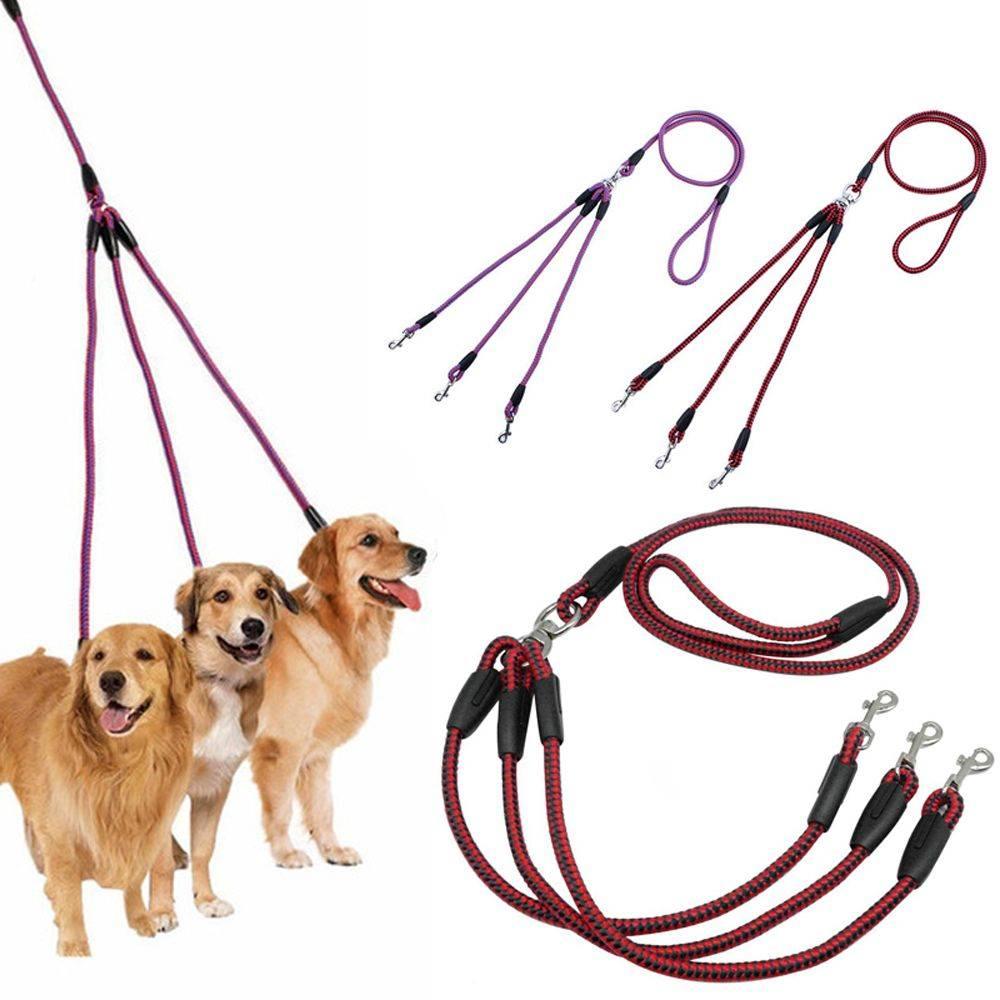 Поводки для собак: как выбрать двойной поводок для маленьких и крупных пород собак? как надеть кожаный собачий поводок на щенка?