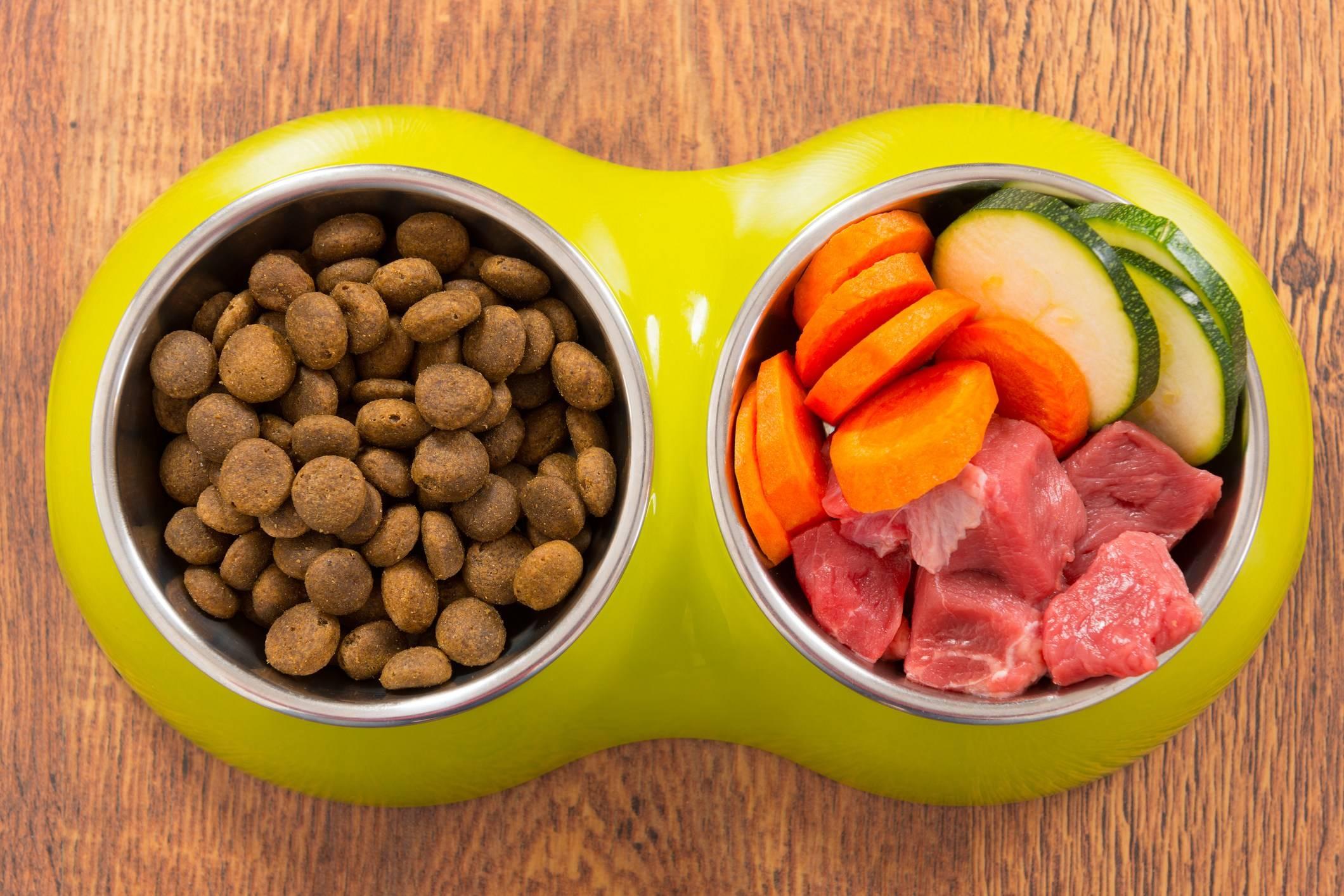 Чем кормить йоркширского терьера (щенка с 1 месяца до года) в домашних условиях правильно, применяя сухой корм супер премиум класса или натуральную пищу