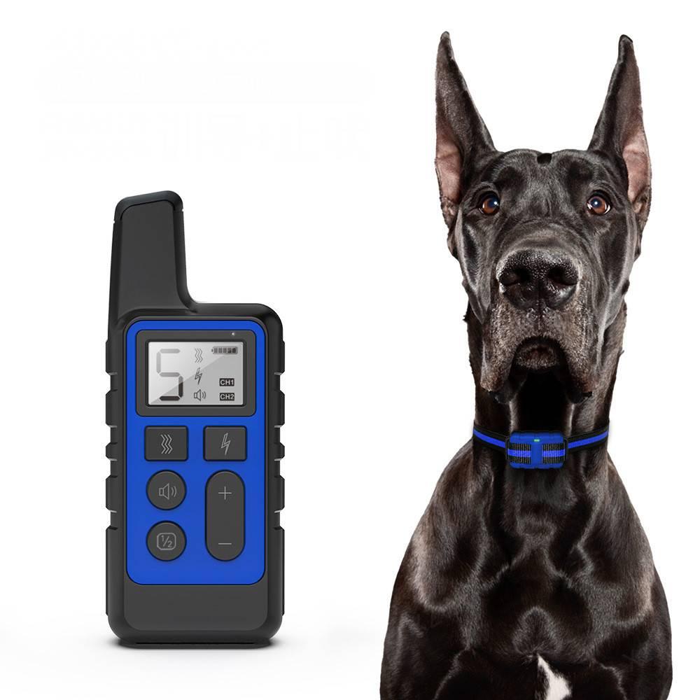 Электроошейник для собак для дрессировки
