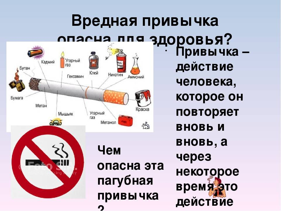 Что будет если кот съест сигарету?
