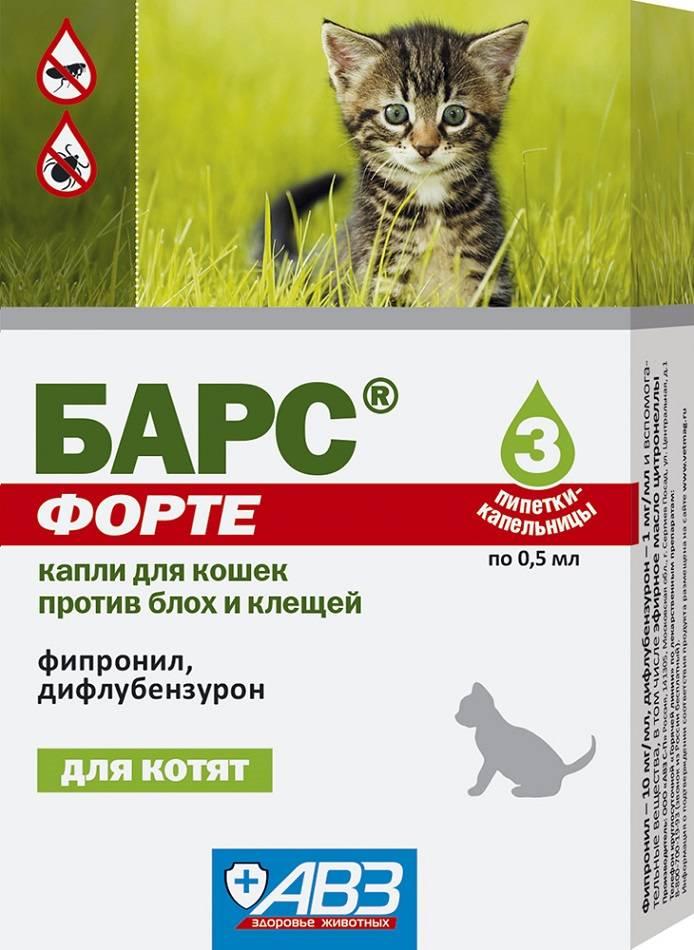 Капли инсектоакарицидные «барс» для кошек: инструкция по применению