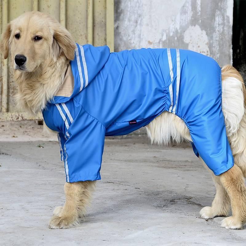 Лежанка для собаки (33 фото): размеры для собак крупных, средних и мелких пород. чем лучше домика? выбираем пластиковый и деревянный лежак