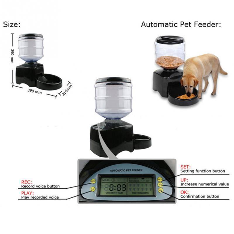 Автоматическая кормушка для кошек с таймером
