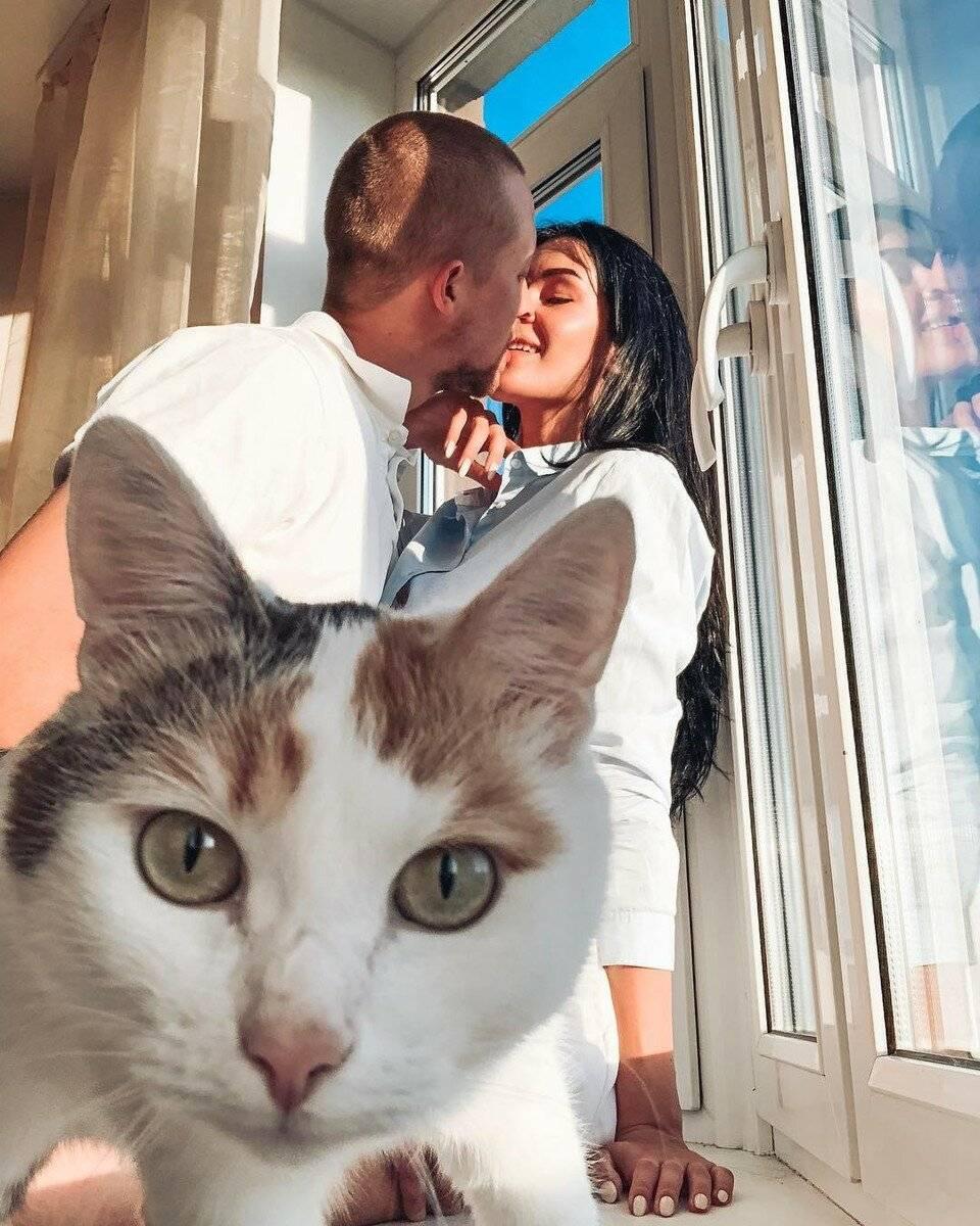 Мохнатые короли instagram: самые популярные животные интернета, которые своей мимимишностью зарабатывают миллионы | noteru.com