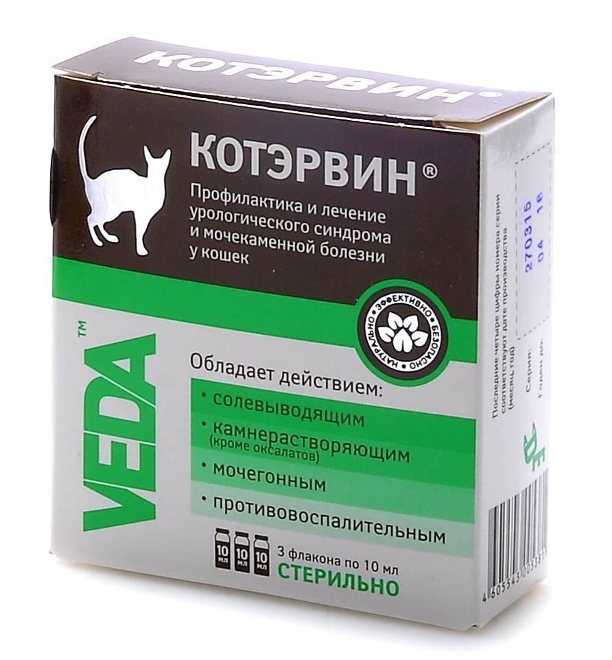 Состав и способ применения препарата котэрвин для кошки: дозировка