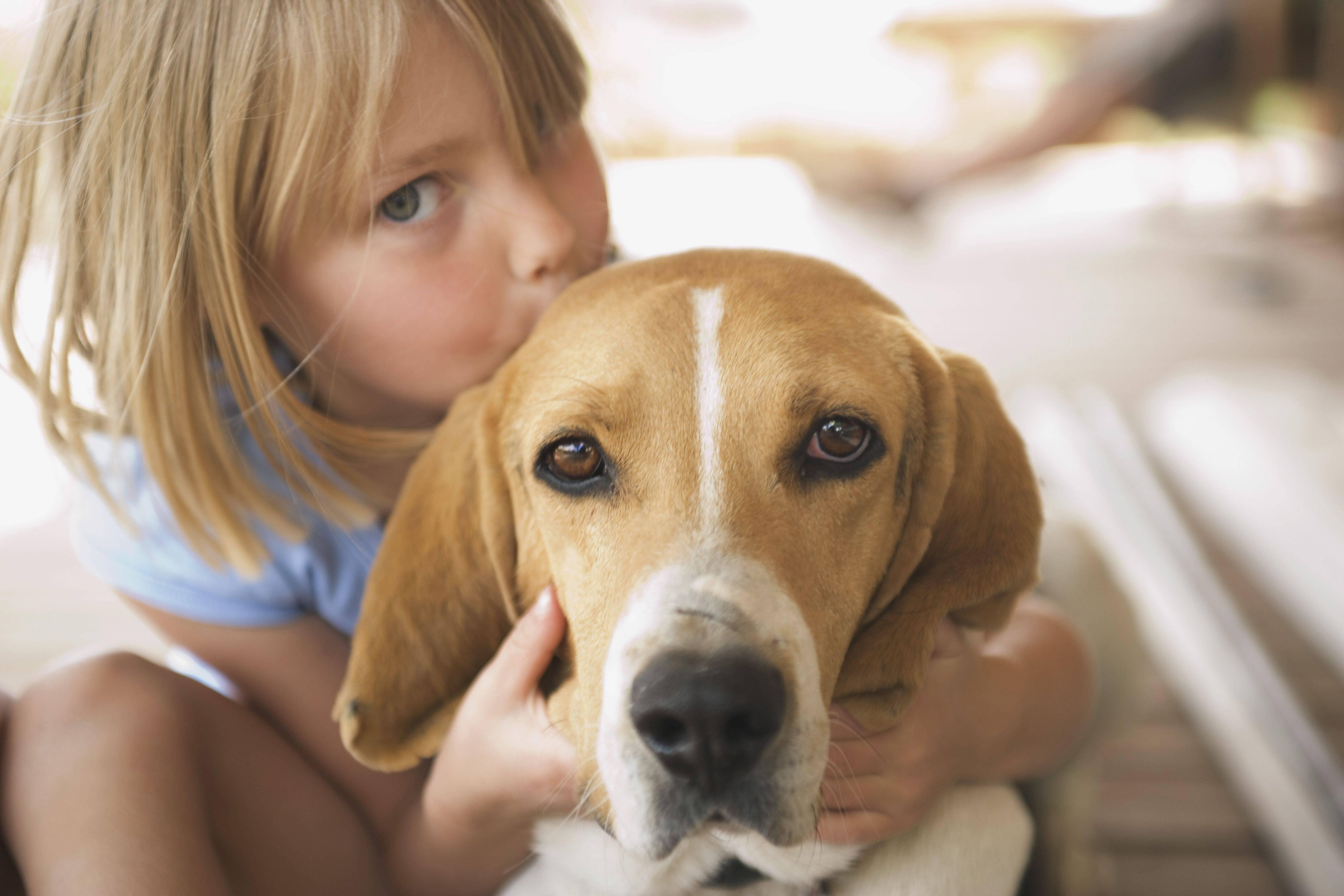 Собака для квартиры и ребенка: без запаха и хорошим характером