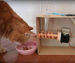 Автокормушка для кошки: особенности выбора дозатора корма и использования автоматической кормушки