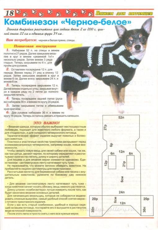 Как правильно вязать вещи для собак мелких пород: техника вязания крючком и спицами