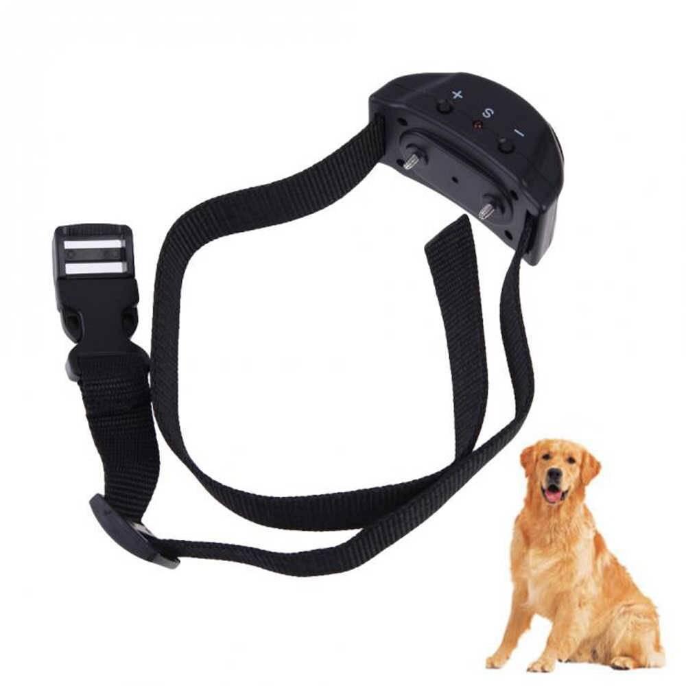 Электронный ошейник для собаки — описание и основные характеристики