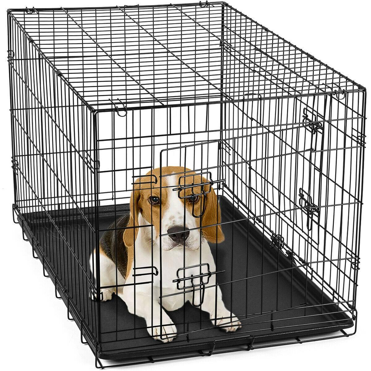 Правила содержания собак в квартире многоквартирного дома
