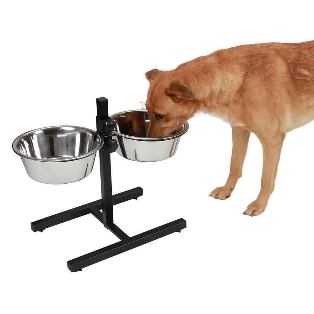 Миски для собак: из чего кормить вашего четвероногого друга?
