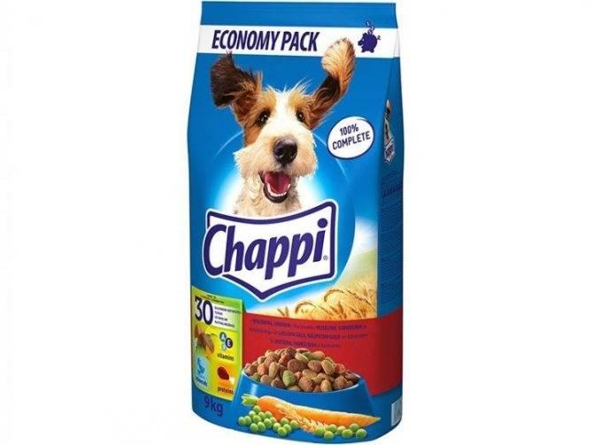 Обзор популярных сухих кормов для собак