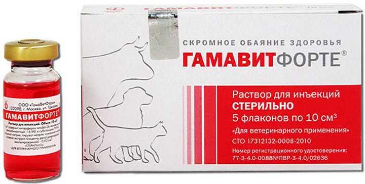 «гамавит» для кошек: описание, показания, применение, противопоказания