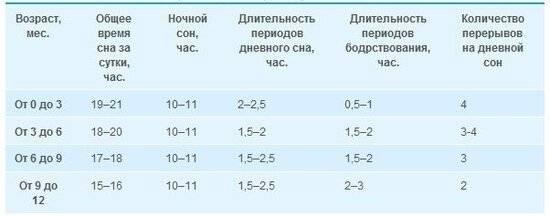 Сон у собаки: сколько спят собаки в сутки, сколько должен спать щенок в 2 месяца, длительность и фазы собачьего сна