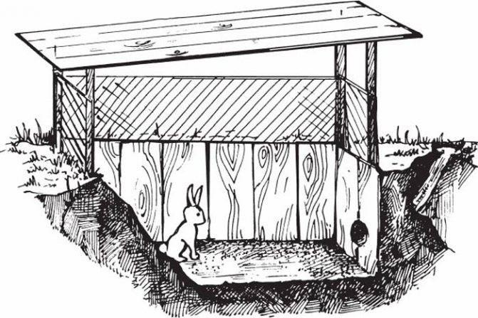 Как сделать вольер для кроликов?