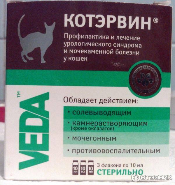 Чем обезболить кошку в домашних условиях. обезболивающие препараты для кошек