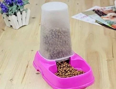 Как своими руками сделать автоматическую кормушку для кошки, какие автокормушки для котов бывают?