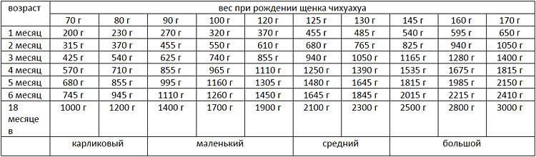 Таблица веса щенка чихуахуа по неделям - oozoo.ru
