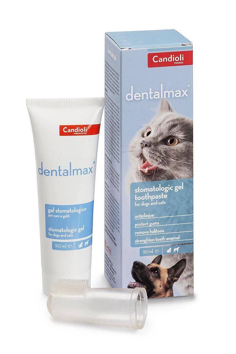 Зубная паста для собак: состав (для щенков, от зубного камня, с натуральными добавками), применение + лучшие средства