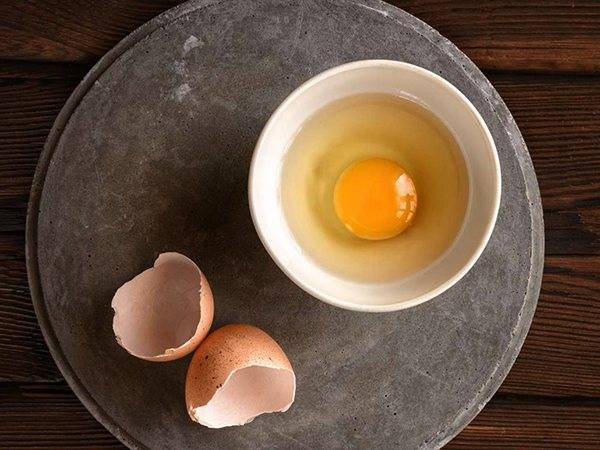 Можно ли собакам давать яйца ? корма
