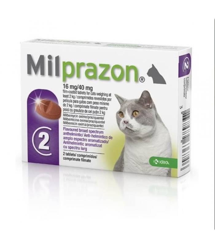"""""""милпразон"""" для кошек: отзывы ветеринаров, инструкция по применению и отзывы - новости, статьи и обзоры"""