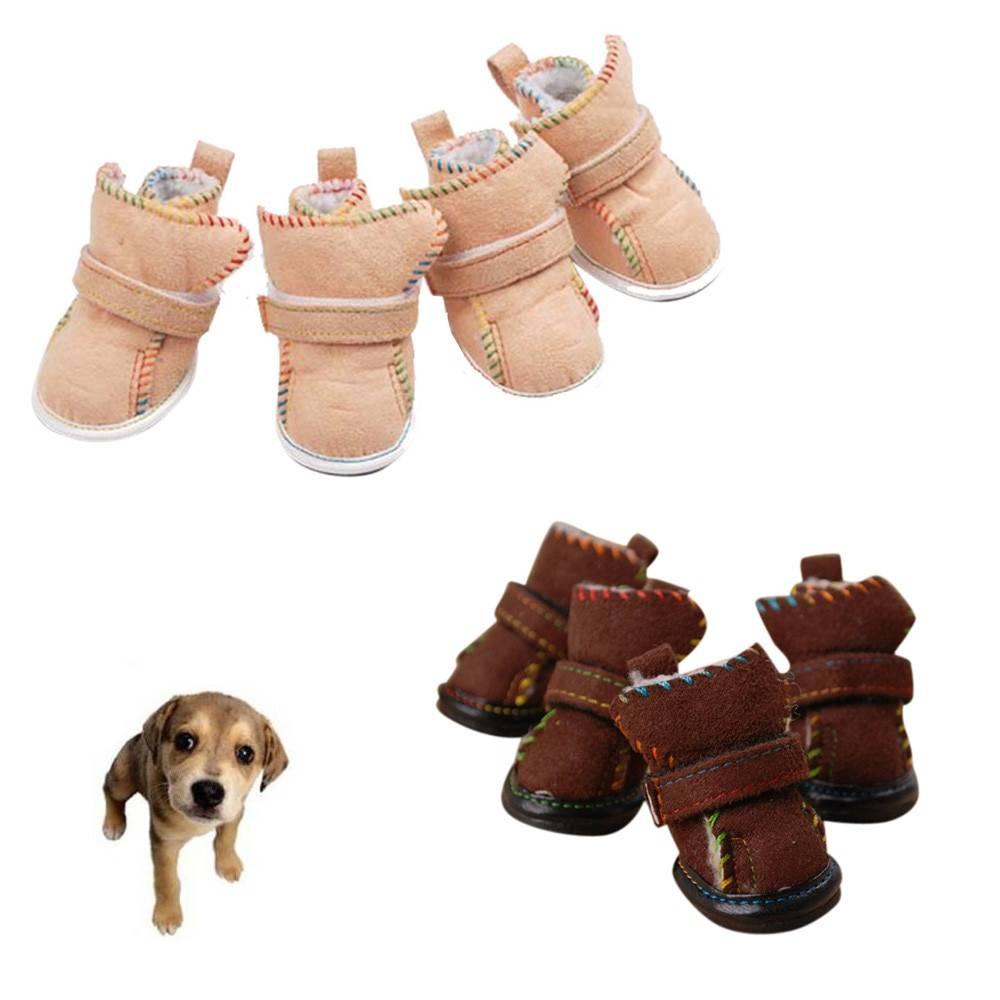 Обувь для маленьких собак: особенности