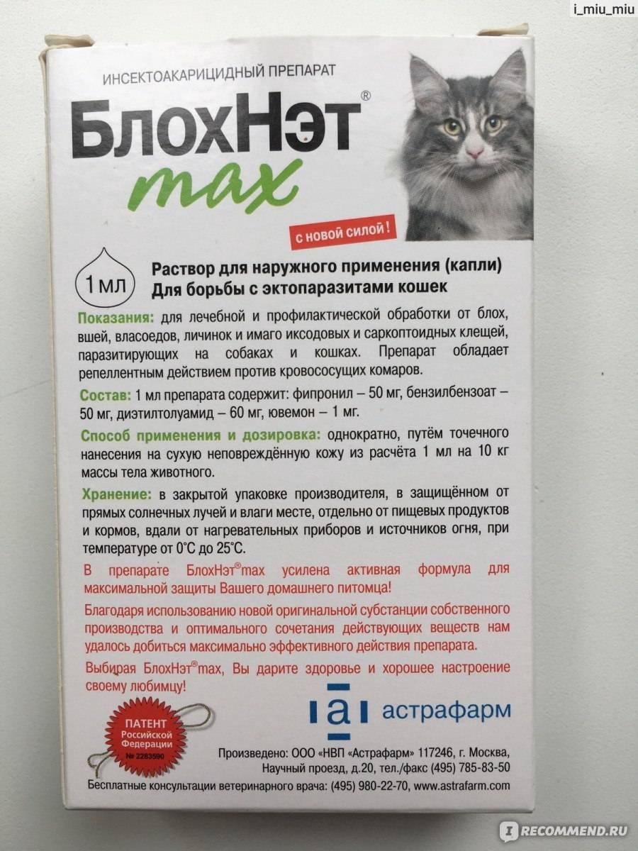 Адвантейдж для кошек: инструкция к каплям по уничтожению блох