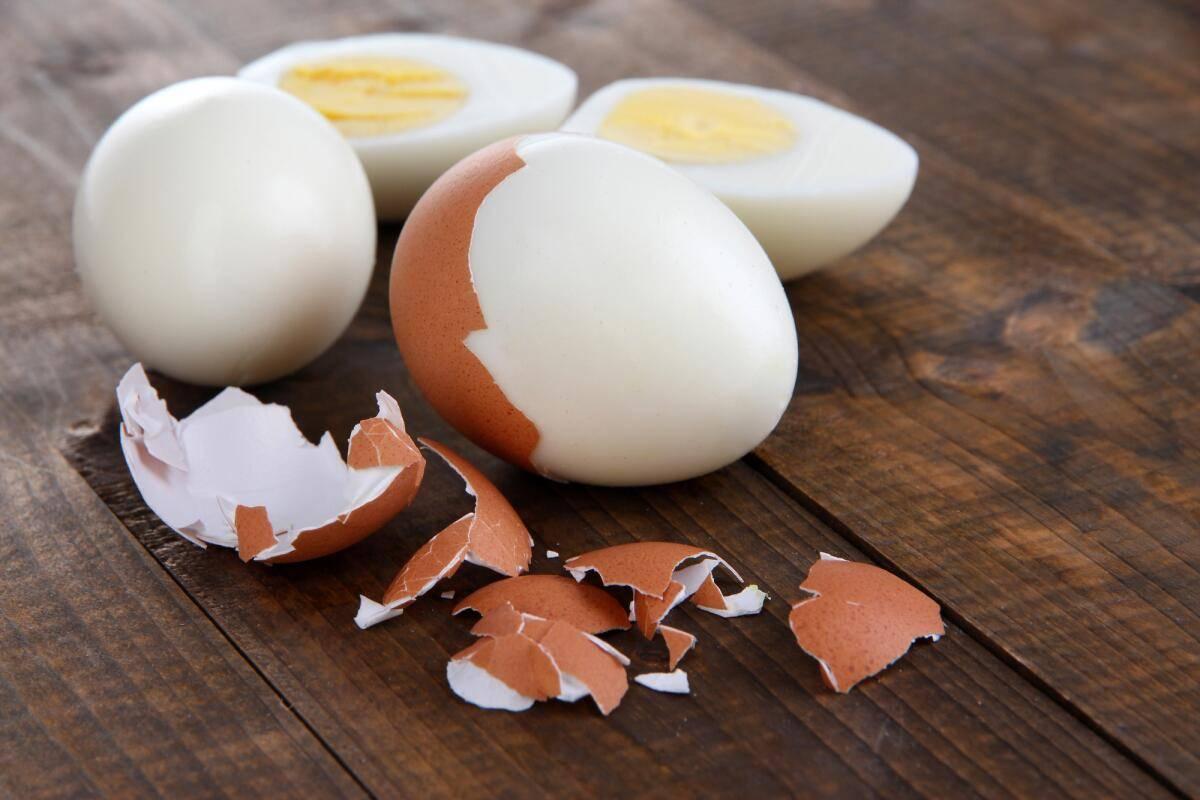 Можно ли щенку давать яйцо, сырое или вареное
