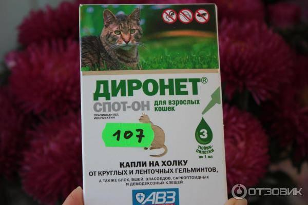 Инструкция по применению препарата диронет спот-он